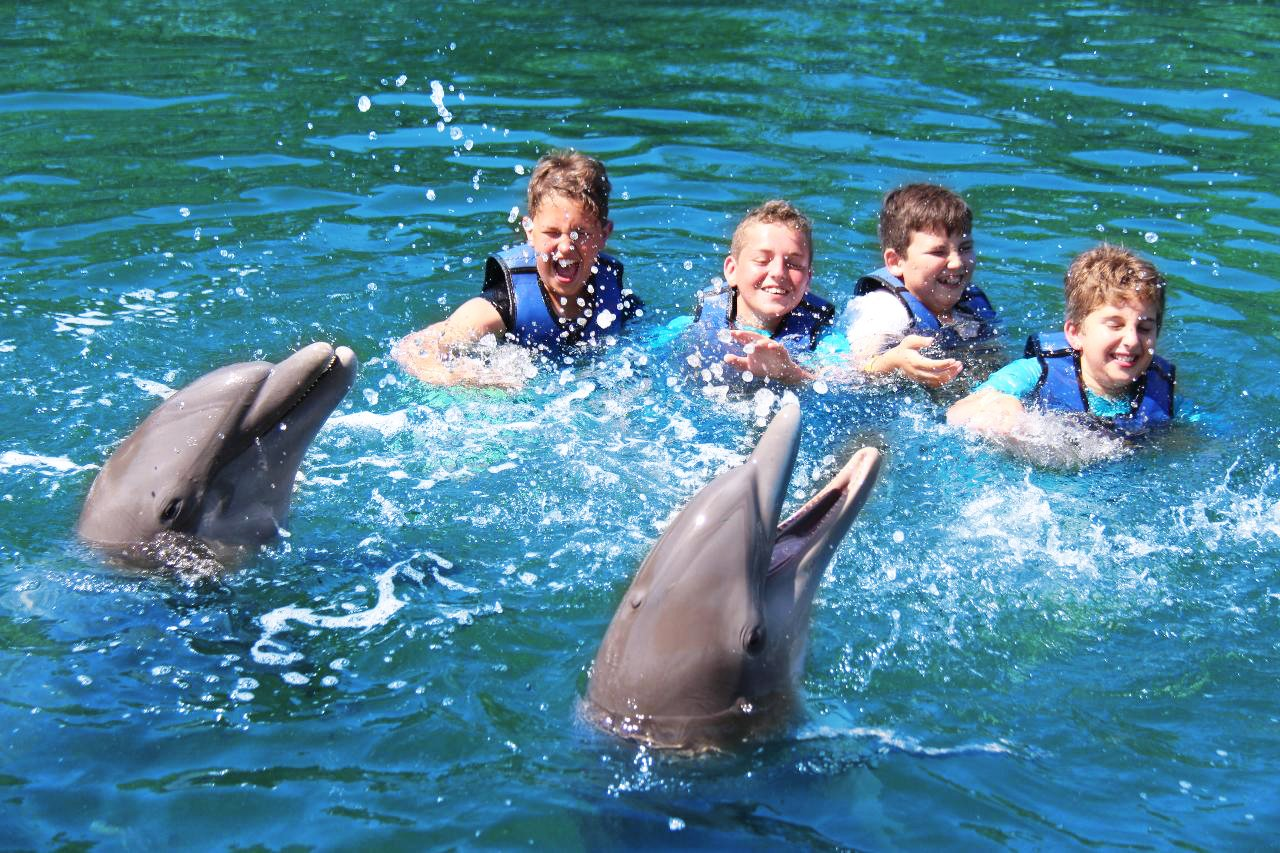 DOL_Boys_Swimming_With_Dolphins-1